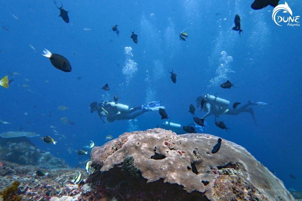 Des vacances de rêve en famille avec la Plongée Bali