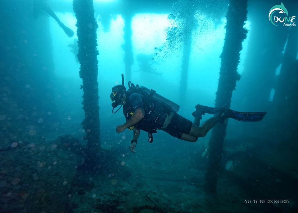 Quel genre de vie marine se trouve dans l'épave de Tulamben?