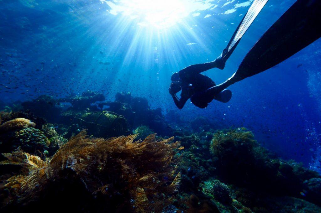 Quelques bonnes raisons de faire un safari plongée à Bali