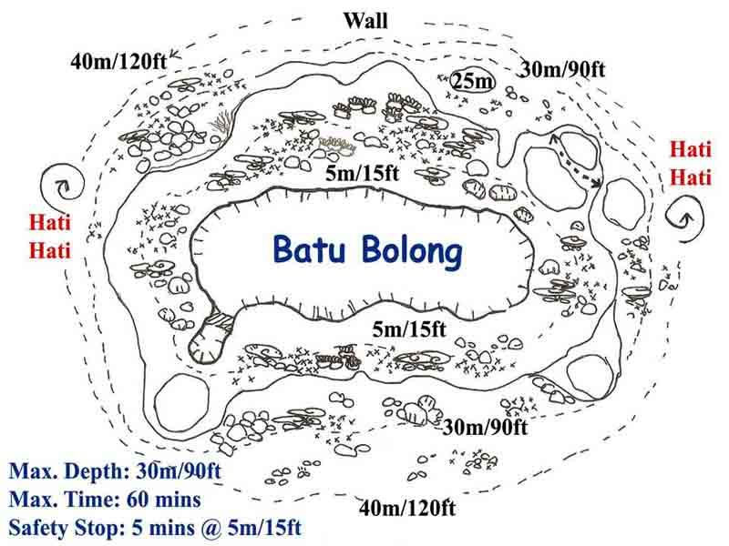 Apprenez à Cartographier d'un Spot Plongée Bali