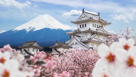 Perdu au Japon! Une destination favorable à Tokyo !